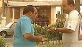 Vendedor apanha de clientes ao fazer promo��o fajuta