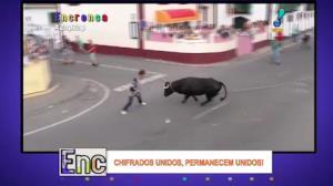Malucos correm de touro furioso