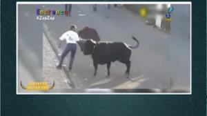 Chifrada da semana: touro pega população na rua