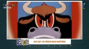 Provocar os touros pode não ser uma boa ideia