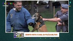 Dennys acompanha treinamento de cães da polícia