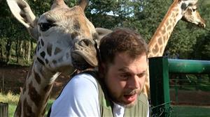 Dennys Motta chama girafa para 'DR' após se assustar com beijo