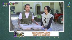 Dennys Motta encara insetos exóticos no Museu do Inseto