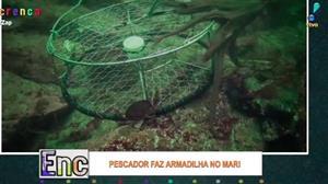 Pescador faz armadilha incrível para pegar polvo