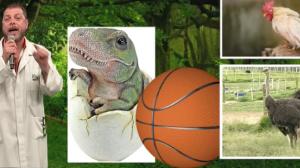 Me explica isso?: Curiosidades sobre os dinossauros