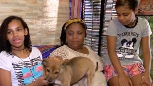 """""""Foi um pouco diferente"""", diz menina adotada por casal de mulheres"""