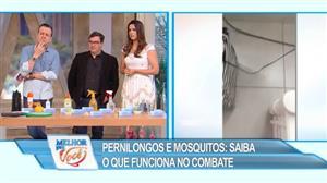 Saiba como combater mosquitos e pernilongos