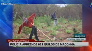 Bandidos usam espantalhos para esconder plantação de maconha em Pernambuco