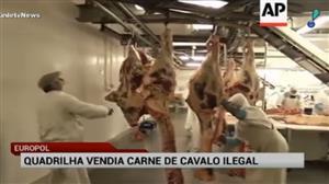 Polícia da Espanha prende quadrilha que vendia carne ilegal de cavalo