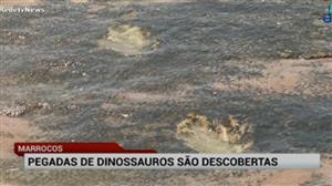 Pegadas de dinossauros são descobertas no Marrocos