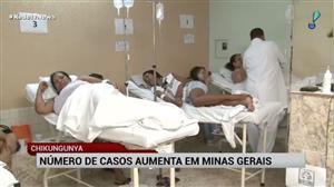 Número de casos de chikungunya aumenta em Minas Gerais