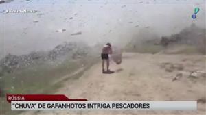 'Tempestade' de gafanhotos intriga pescadores na Rússia