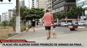 Placas vão alertar sobre proibição de animais na orla de Vitória (ES)
