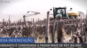 Monsanto é condenada a pagar mais de R$ 1 bilhão de indenização