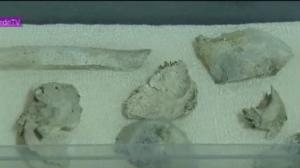Fragmentos do crânio de Luzia são encontrados