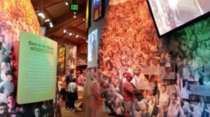 Paz, amor e música: Woodstock completa 50 anos