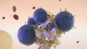 Terapia que reverteu câncer em paciente terminal será testada novamente