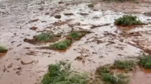 Brumadinho, Suzano e Ninho do Urubu: relembre tragédias que marcaram 2019