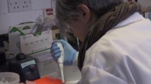Vacina contra a Covid-19 é aprovada em primeira fase nos EUA