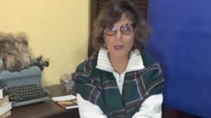 """""""O setor de serviços está parado"""", diz Salette Lemos"""