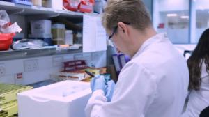Vacina de Oxford é segura e induz resposta imune, dizem cientistas