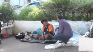 Ator testa reações de moradores de rua ao tentar comprar seus cachorros