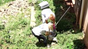 Ativista resgata mais de 150 gatos da casa de acumulador; veja vídeos