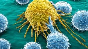Saiba tudo sobre câncer: Sinais, Prevenção e Tratamento
