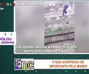 Cachorro ajuda homem bêbado a subir em plataforma de estação no Rio