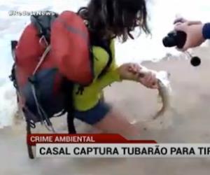 Casal captura tubarão para tirar fotos
