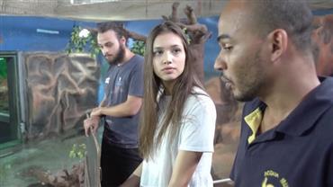 Maura Maurer vai ao Guarujá e conhece os hábitos dos jacarés