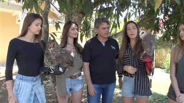 Modelos invadem o mundo das araras, cobras e corujas no Conexão Animal