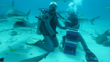 Cê nunca fez isso não? Dennys alimenta mais de 30 tubarões