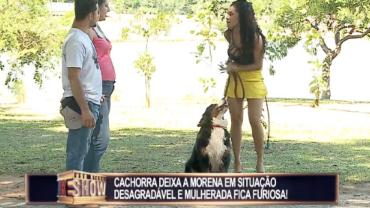 Cachorra deixa a morena sem saia e mulherada fica furiosa
