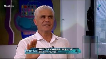 Rui Tavares Maluf, Cientista Político