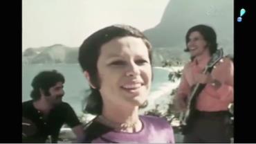 Morte da cantora Elis Regina completa 35 anos