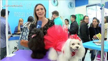 Evento em São Paulo mostra as novidades do setor de animais de estimação
