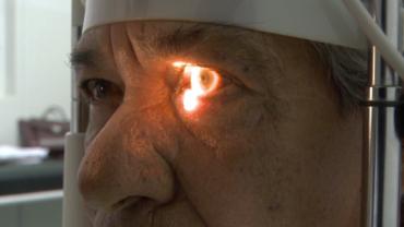 OMS: Até 2050 mais da metade da população mundial poderá ter miopia