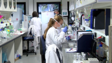 Médicos brasileiros criam protocolo de tratamento para a Covid-19