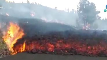 Vulcão destrói mais de 100 casas nas Ilhas Canárias