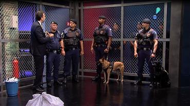 Cão farejador encontra essência de cocaína e carregador com munição