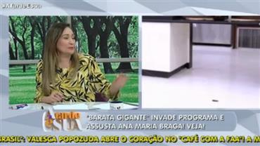 """""""Craque em factoides"""", diz Thiago Rocha sobre Ana Maria Braga"""