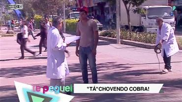 """""""Biólogos"""" tentam assustar pedestre com cobra e se dão mal"""